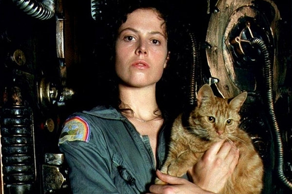 Famous Movie Cats