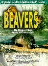 Beavers