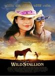 The Wild Stallion