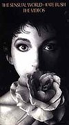 Kate Bush - The Sensual World - The Videos