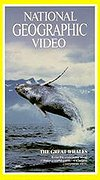 National Geographic Video - The Great Whales