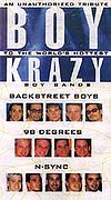 Boy Krazy: An Unauthorized Tribute to the World's Hottest Boy Bands