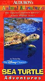 Audubon's Animal Adventures - Sea Turtle Adventures