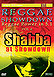 Reggae Showdown - Shabba at Showdown