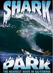 Shark Park: The Heaviest Wave in California