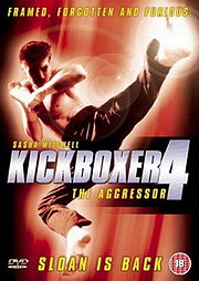 Kickboxer 4: The Aggressor Poster