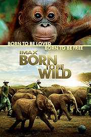 Born To Be Wild 2011