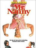 Mr. Nanny