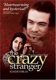 The Crazy Stranger Poster