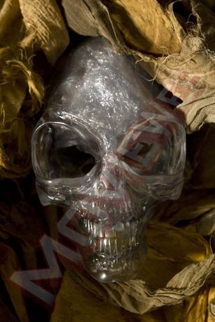 EXCLUSIVE: First Look at the Actual Crystal Skull from Indiana Jones 4!
